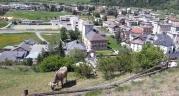 Schloss-Wildenstein