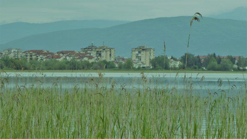 Ohri-Struga