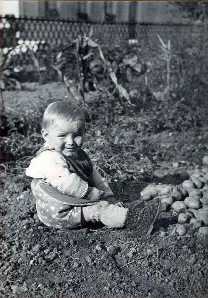 Armin-1944